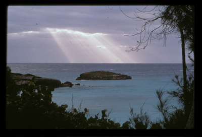 Nonesuch, Bermuda (Phote by Dave Lee)